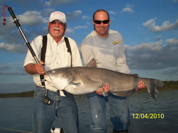 48 lb Blue Catfish Caught on December 4, 2010